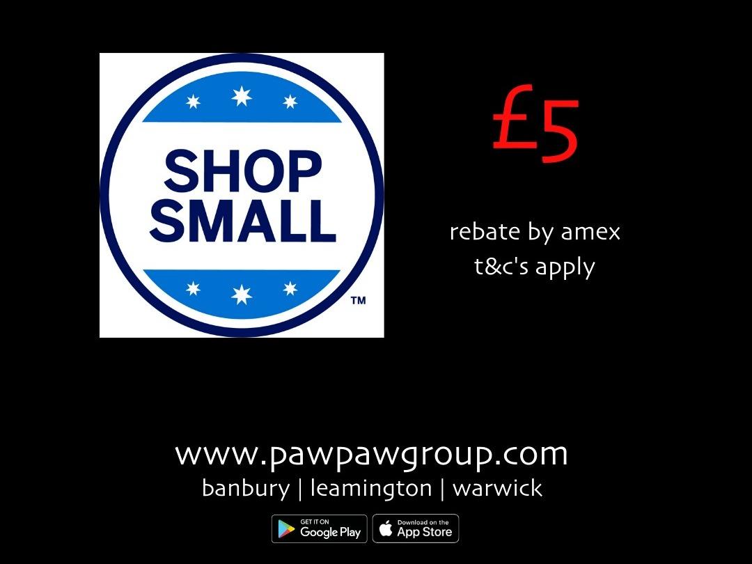 shop small, earn rewards